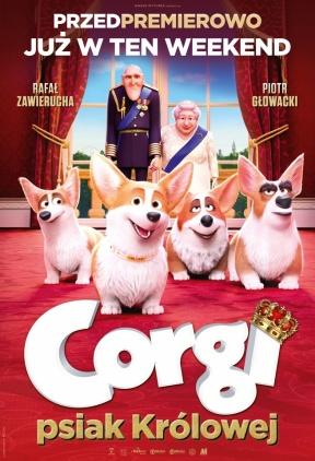 Przedpremierowo Corgi, psiak królowej Kliknięcie w obrazek spowoduje wyświetlenie jego powiększenia